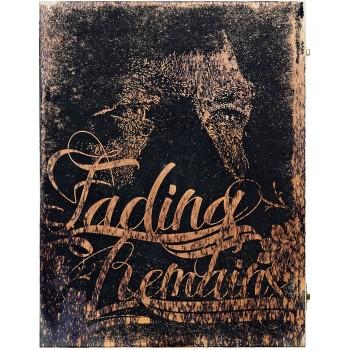 VHILS - Fading Dogmas (limited edition)